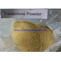 Cheap Anabolic 99% Assay Trenbolone Powder 100mg 10161 33 8 For Weight Loss And Increase Muscle wholesale