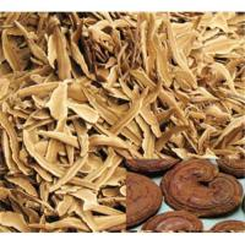 Quality Mushroom Extract & Mushroom Mycelium powder for sale