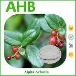 Cheap CAS 84380-01-8 Freckle Cream Fermentation α-Arbutin wholesale