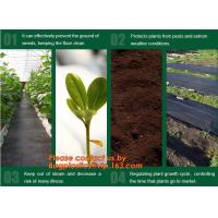 Cheap Agricultural plastic ground cover weed mat, pp weed control mat, for greenhouse and outer use,ground cover, weed mat, ma wholesale