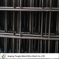 "Cheap Black Welded Wire Mesh |Made by Low Carbon Wire 12bwg~27bwg with 1/4""~2"" wholesale"