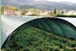 Cheap Dark Green , Black Sun Shade Netting , Hdpe Anti UV Agriculture Net wholesale