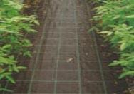 Cheap Weed control mat wholesale