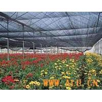 Cheap Agricultural Shade Netting wholesale
