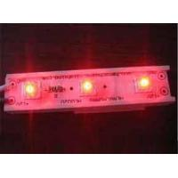 Cheap Piranha LED Module wholesale