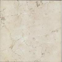 Cheap China Marble Champagne White for sale