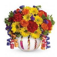 Cheap Birthday Teleflora's Brilliant Birthday Blooms.No.6 delivery birthday to wholesale