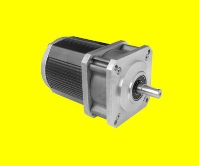 Servo Motor Low Speed Syn Gear Motor Of Motecelectric