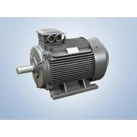 Cheap YX3 Series High-efficiency Three-phase Induction Motor wholesale