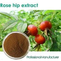 Cheap Factory Rosehip Seed Oil,Rose Hips Seed Oil , Rose Hips Oil wholesale