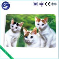 Cheap High quality 3D Lenticular Animal Placemat wholesale