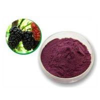 Cheap Mulberry Leaf P.E mulberry leaf extract mulberry leaf powder wholesale