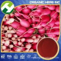 Cheap Red Radish Color Natural Red Pigment wholesale