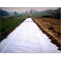 Agriculture cover non-woven PP(Eco-friendly)