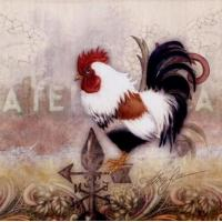 Cheap Paisley Rooster - Alma Lee wholesale