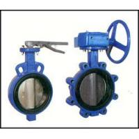 Cheap Bi-axial butterfly valve witho wholesale