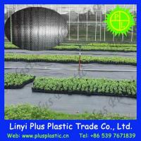 Grass Cloth Agricultural Ground Cover