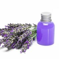 Cheap Lavender oil wholesale