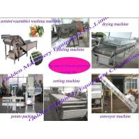 Vegetable and fruit processing machine line