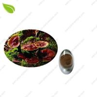 Cheap Ganoderma Extract >herbal extract wholesale