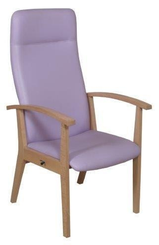 Quality Healthcare and education Amelia armchair for sale