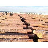 Buy cheap Russian imported logs from wholesalers