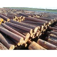 Buy cheap Imported Russian logs in Manzhouli from wholesalers